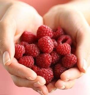 Raspberry ketones or Acai Berries?